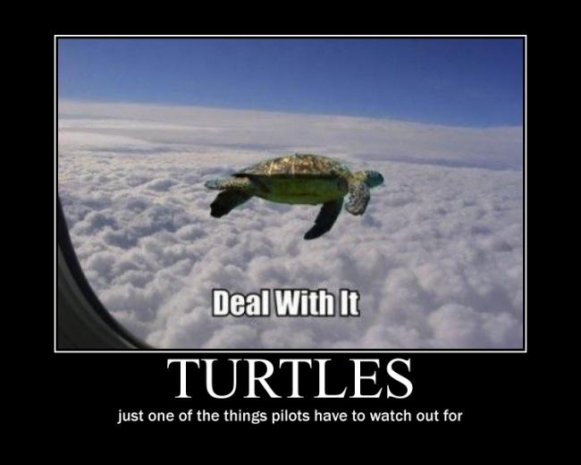 flying_turtle_motivational_by_val30fdr3am5-d3iep6b